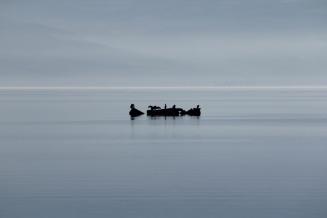 winter sea 07